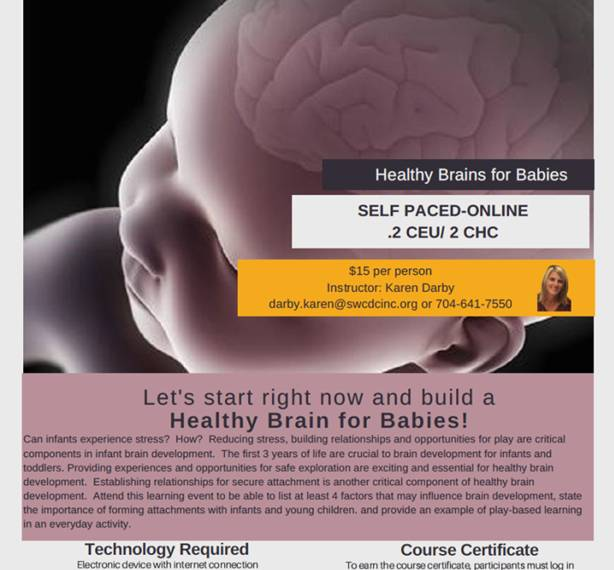 Online- Healthy Brains for Babies -Self paced training